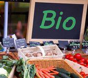Fruits et légumes bio Les sur-marges de la grande distribution Publié le : 29/08/2017