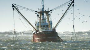 La pêche durable reste à quai ! #OnVeutPlusDuChalut