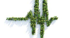 Santé environnementale – Lettre ouverte à Monsieur Emmanuel Macron, Président de la République